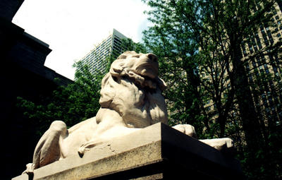 The New York Public Library Lion