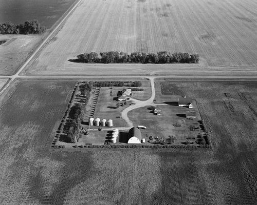 Christianson Farm, Cummings, ND, August 2007